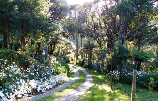 Flora e Fauna - Pousada Cantos e Encantos - Urubici | Serra Catarinense