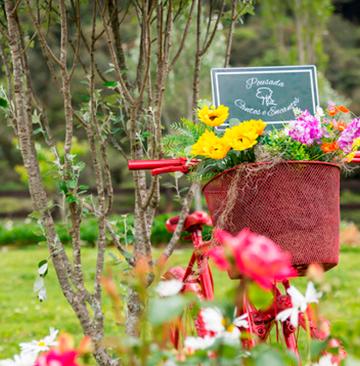 Flores que encantam - Urubici - Serra Catarinense