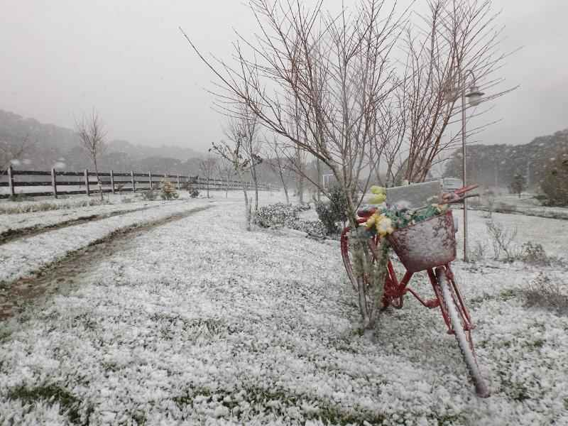 A Magia da Neve - Urubici - Serra Catarinense